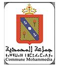 الموقع الرسمي لجماعة المحمدية